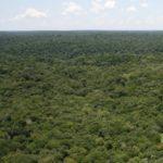 アマゾンのジャングルで「古代ミステリーサークル」450個発見か