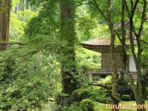 大原三千院の見どころは苔とお地蔵さん?春から夏が見頃のおすすめ